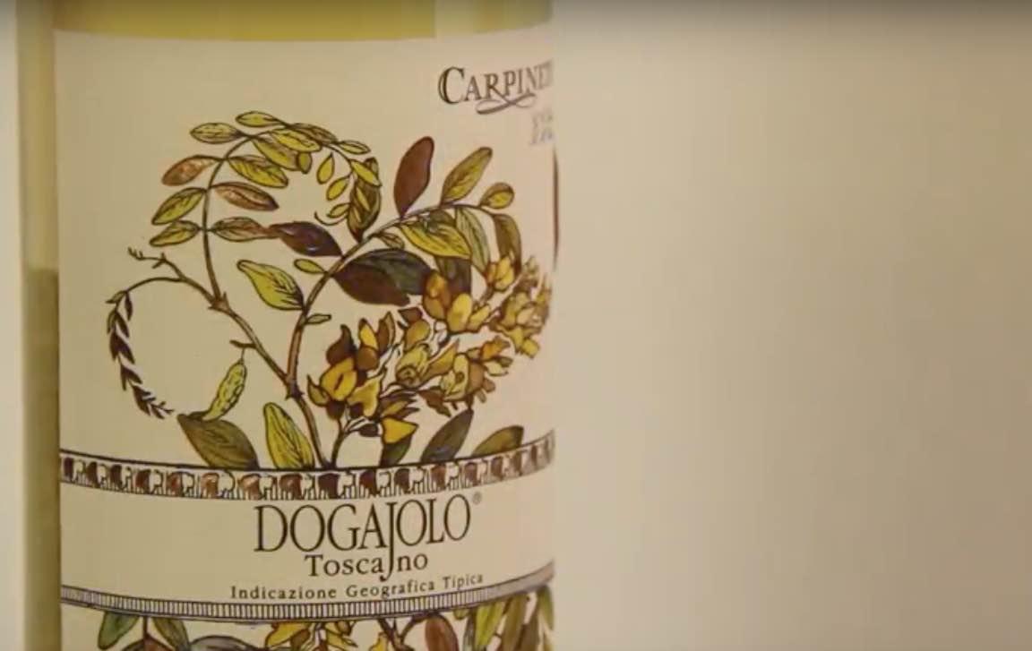 Wine tasting - Dogajolo Bianco Toscano I.G.T.