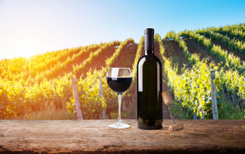 Colorino, Ciliegiolo e Canaiolo: Minor Tuscan Vines Worth Knowing