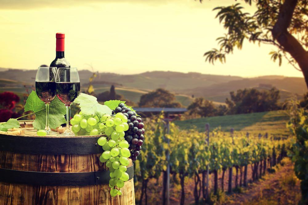 Dalla Romagna alla Toscana: le mille facce del Sangiovese